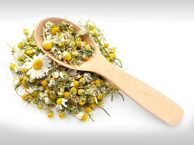 uses-of-chamomile-1